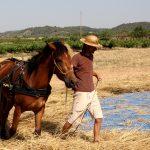 Un món rural innovador!