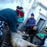 Matança del porc: de la tradició a la desobediència